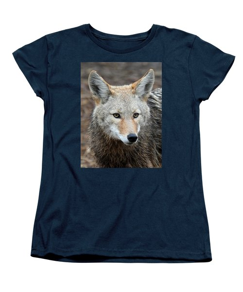 Women's T-Shirt (Standard Cut) featuring the photograph Coyote by Athena Mckinzie
