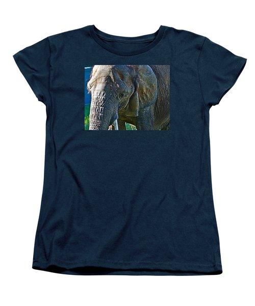 Cuddles In Search Women's T-Shirt (Standard Cut) by Miroslava Jurcik