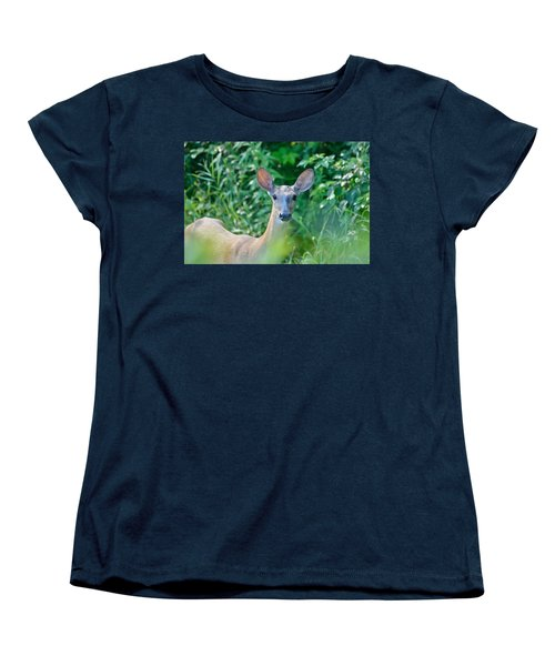 Curious Doe Women's T-Shirt (Standard Cut) by David Porteus