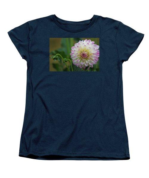 Dahlia In The Mist Women's T-Shirt (Standard Cut) by Jeanette C Landstrom