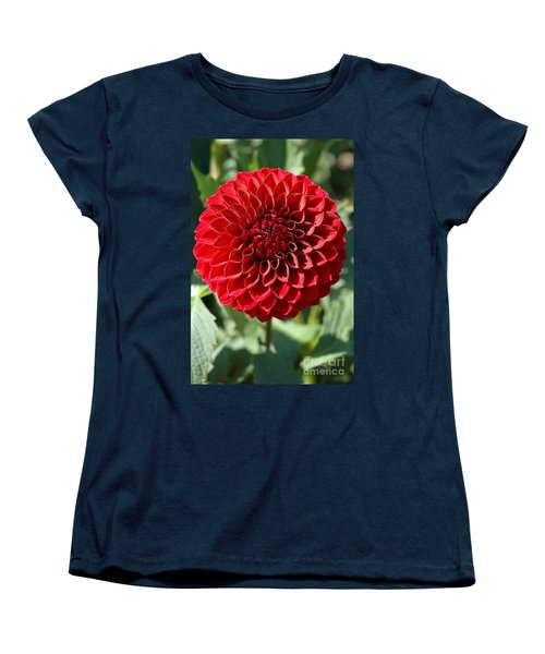 Women's T-Shirt (Standard Cut) featuring the photograph Dahlia Xii by Christiane Hellner-OBrien