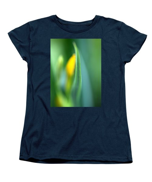 Dream Women's T-Shirt (Standard Cut) by Annie Snel