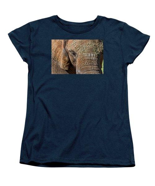 Elephant Never Forgets Women's T-Shirt (Standard Cut) by Miroslava Jurcik