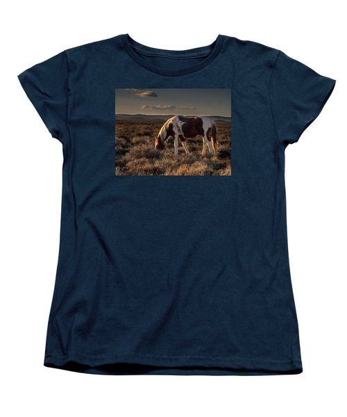 Evening Solitude In Sand Wash Basin Women's T-Shirt (Standard Cut) by Nadja Rider
