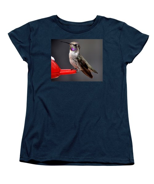 Women's T-Shirt (Standard Cut) featuring the photograph Female Anna's Hummingbird On Perch Posing For Her Supper by Jay Milo