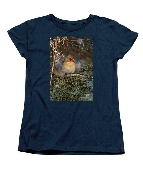 Female Norther Cardinal Women's T-Shirt (Standard Cut) by Michael Cummings