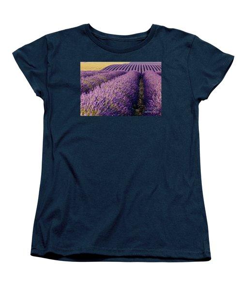 Fields Of Lavender Women's T-Shirt (Standard Cut) by Brian Jannsen