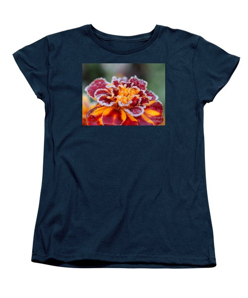 French Marigold Named Durango Red Outlined With Frost Women's T-Shirt (Standard Cut) by J McCombie