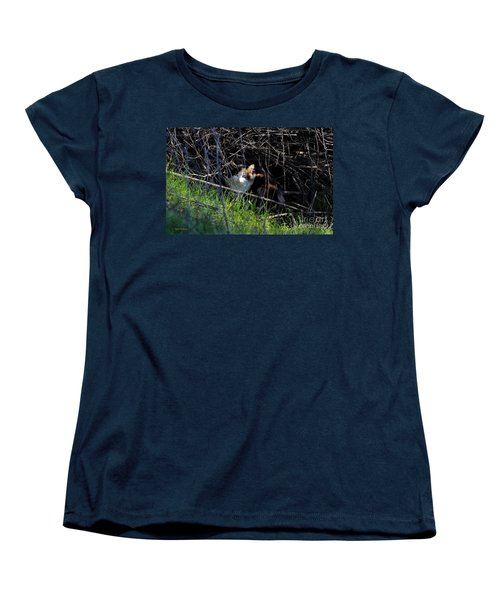 Frightened Feral Calico  Women's T-Shirt (Standard Cut) by Susan Wiedmann