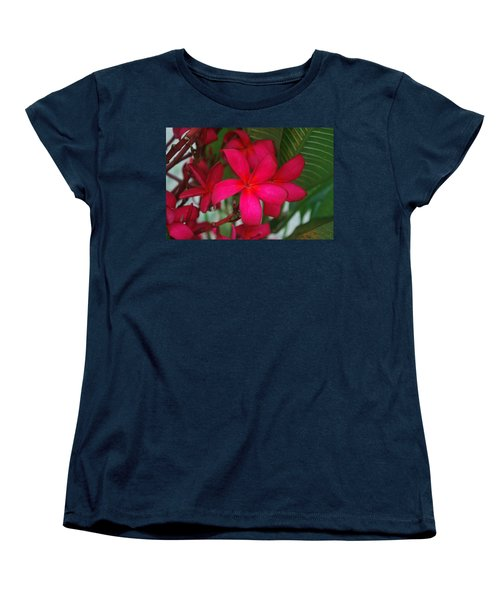 Garden Treasures Women's T-Shirt (Standard Cut) by Miguel Winterpacht
