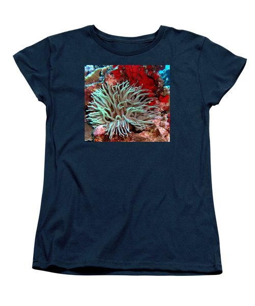 Giant Green Sea Anemone Against Red Coral Women's T-Shirt (Standard Cut) by Amy McDaniel