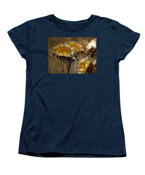 Golden Thistle Women's T-Shirt (Standard Cut) by Bill Gallagher