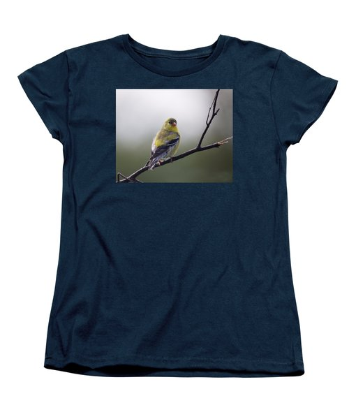 Women's T-Shirt (Standard Cut) featuring the photograph Goldfinch Molting To Breeding Colors by Susan Capuano