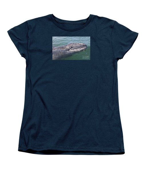 Gray / Grey Whale Eschrichtius Robustus Women's T-Shirt (Standard Cut) by Liz Leyden