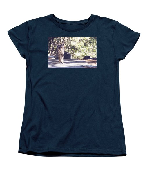 Coyote And Me At Vernal Falls Women's T-Shirt (Standard Cut) by Debby Pueschel