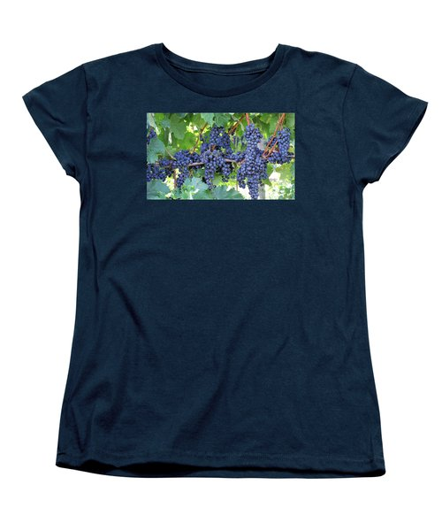 Great Lakes Vineyard Near Lake Erie Women's T-Shirt (Standard Cut) by Steve Archbold