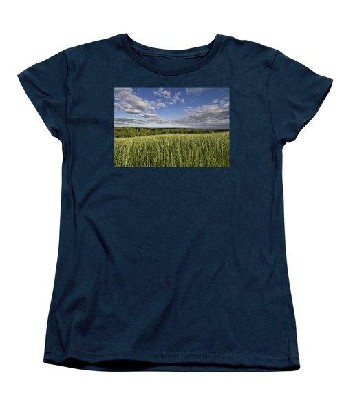 Green And Blue Women's T-Shirt (Standard Cut) by Daniel Sheldon