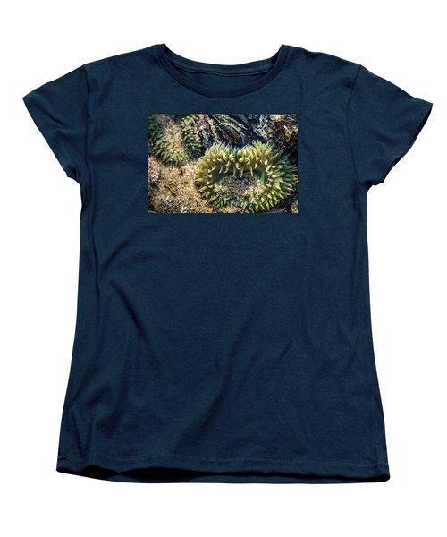 Green Sea Anemone Women's T-Shirt (Standard Cut) by Linda Villers