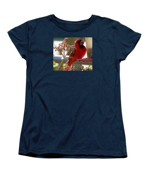 Handsome Red Male Cardinal Visiting Women's T-Shirt (Standard Cut) by Belinda Lee