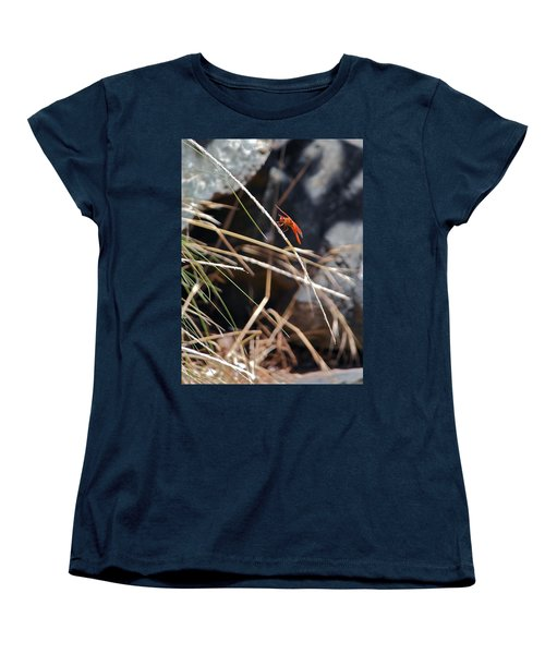 Women's T-Shirt (Standard Cut) featuring the photograph Hanging On by Michele Myers