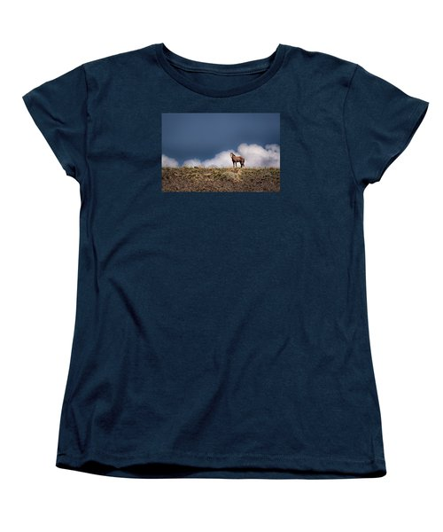 Horse In The Clouds  Women's T-Shirt (Standard Cut) by Janis Knight
