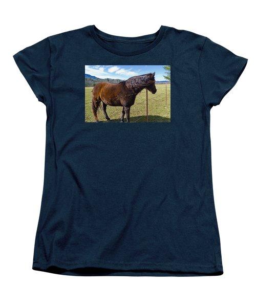 Horse Women's T-Shirt (Standard Cut) by Melinda Fawver
