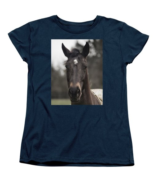Horse With Gentle Eyes Women's T-Shirt (Standard Cut) by Belinda Greb