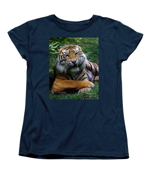 I Don't Always Women's T-Shirt (Standard Cut) by Liz Masoner