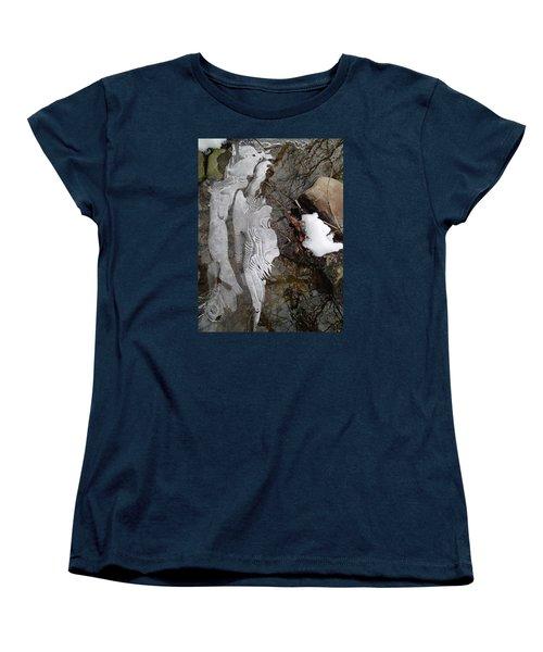 Ice Flow Women's T-Shirt (Standard Cut) by Robert Nickologianis