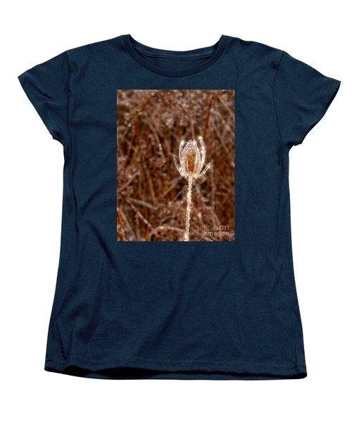 Icy Thistle Women's T-Shirt (Standard Cut) by Les Palenik