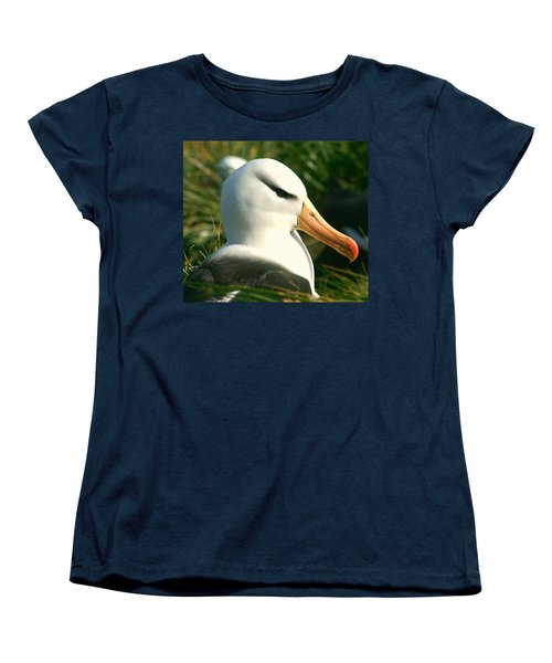 Women's T-Shirt (Standard Cut) featuring the photograph In Waiting by Amanda Stadther