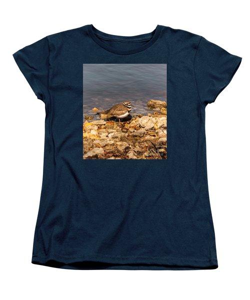 Kildeer On The Rocks Women's T-Shirt (Standard Cut) by Robert Frederick