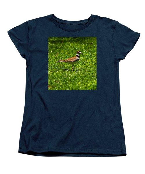 Killdeer Charadrius Vociferus 2 Women's T-Shirt (Standard Cut) by Howard Tenke