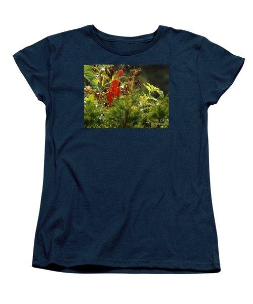 Women's T-Shirt (Standard Cut) featuring the photograph Lantern Plant by Brenda Brown