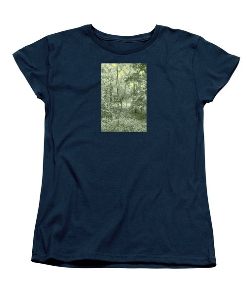 Women's T-Shirt (Standard Cut) featuring the photograph Light Forest Scene by Tom Wurl