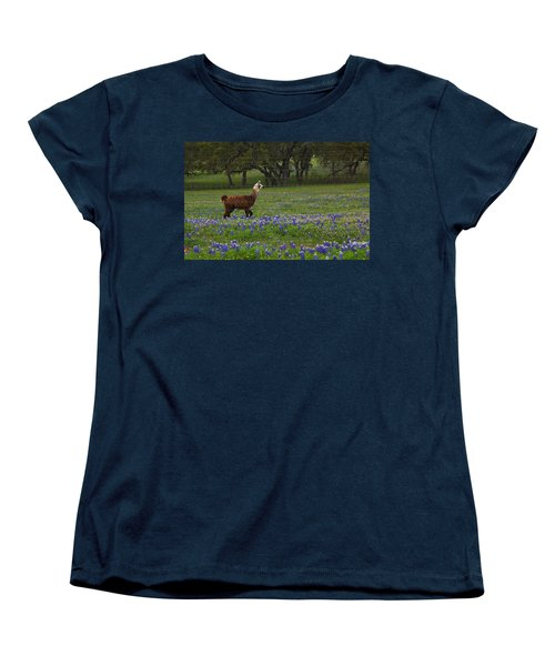 Women's T-Shirt (Standard Cut) featuring the photograph Llama In Bluebonnets by Susan Rovira