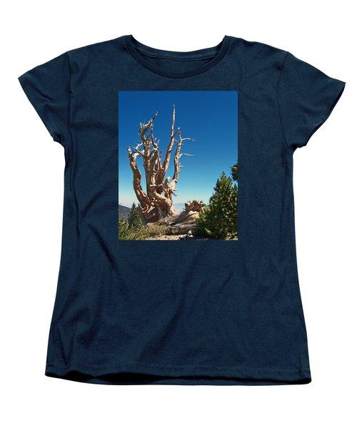 Women's T-Shirt (Standard Cut) featuring the photograph Lone Bristlecone by Alan Socolik