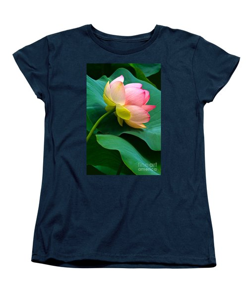 Lotus Blossom And Leaves Women's T-Shirt (Standard Cut) by Byron Varvarigos