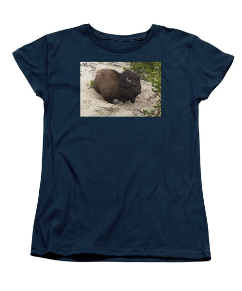 Male Buffalo At Hot Springs Women's T-Shirt (Standard Cut) by Belinda Greb