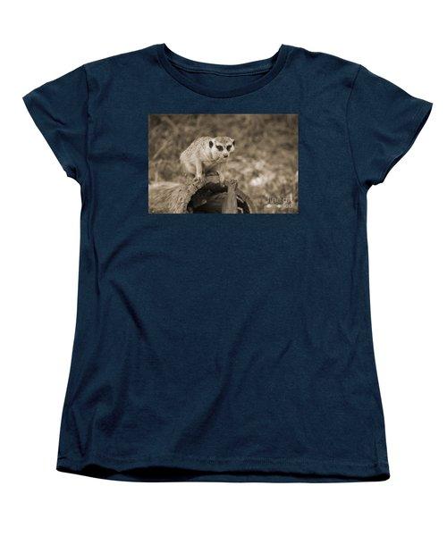Meerkat On A Log Women's T-Shirt (Standard Cut) by Douglas Barnard