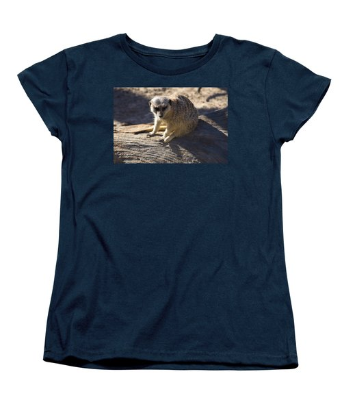 Meerkat Resting On A Rock Women's T-Shirt (Standard Cut) by Chris Flees