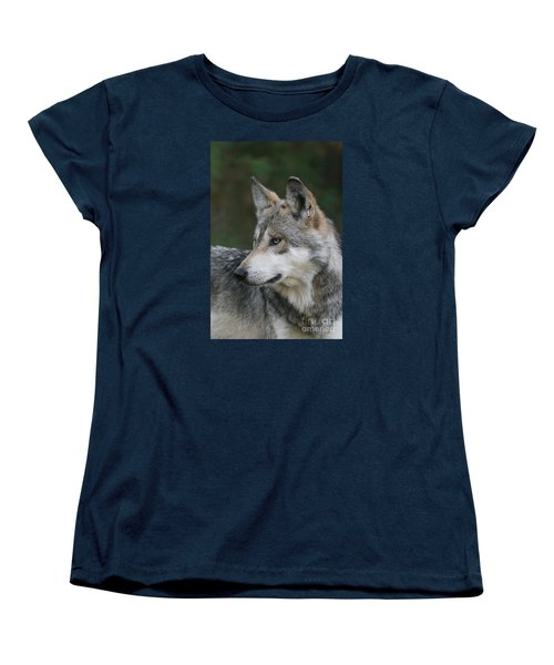 Mexican Wolf #6 Women's T-Shirt (Standard Cut) by Judy Whitton