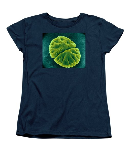 Women's T-Shirt (Standard Cut) featuring the photograph Micrasterias Angulosa, Algae, Sem by Science Source