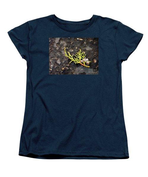 Women's T-Shirt (Standard Cut) featuring the photograph Missing Christmas by Meghan at FireBonnet Art