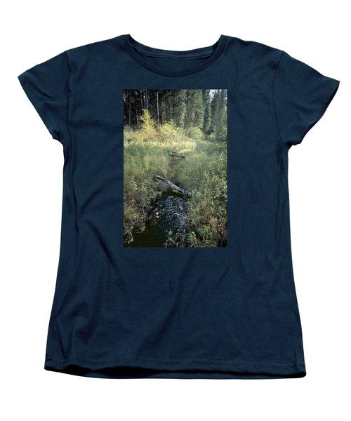 Mississippi River Headwaters Women's T-Shirt (Standard Cut) by Garry McMichael