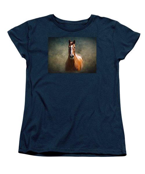 Misty In The Moonlight Women's T-Shirt (Standard Cut) by David Dehner
