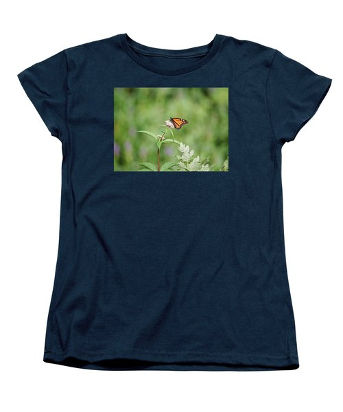 Monarch Women's T-Shirt (Standard Cut) by David Porteus