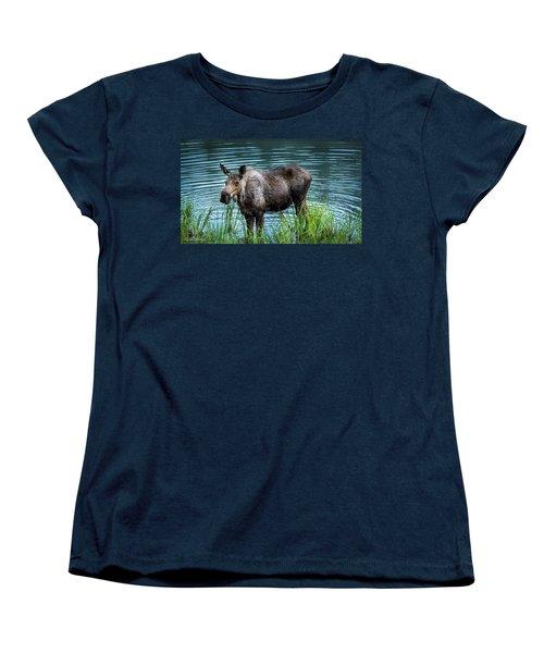 Moose Women's T-Shirt (Standard Cut) by Andrew Matwijec