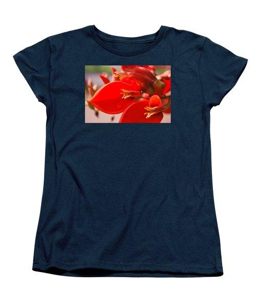 Morning Jog Women's T-Shirt (Standard Cut) by Miguel Winterpacht