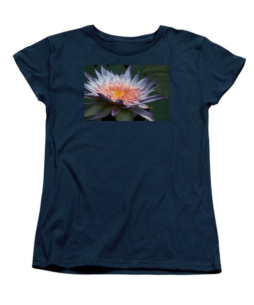Nature's Baroque Women's T-Shirt (Standard Cut) by Yvonne Wright
